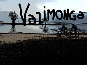 vazimonga