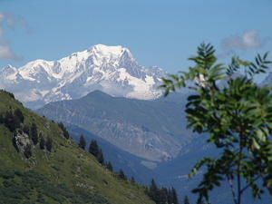 creation-cd-montagne0073.JPG