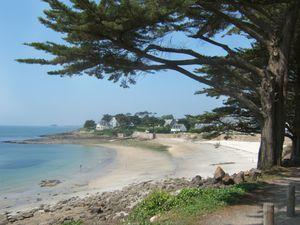 Port-Navalo-baie2.jpg