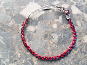 collier chat rouge et bleu