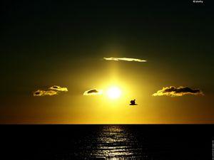 galerie-membre,lever-soleil,rencontre