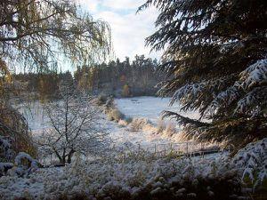 neige1.jpg