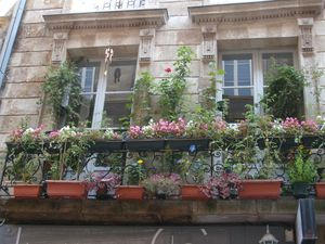 photos-de-bordeaux-004.jpg