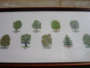 arbres-avant-copie-1.jpg