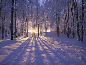 fond_ecran_wallpaper_hiver_0132.jpg