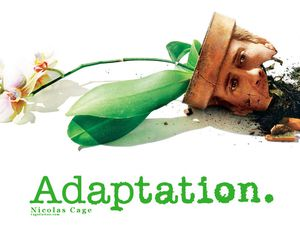 adaptation1