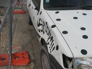 Auto-dalmatien-2.JPG