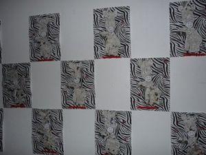 zou-2.jpg