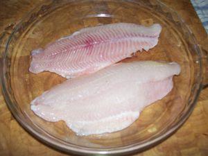 Catfish recipe (2)
