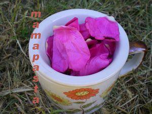 thé-rose3