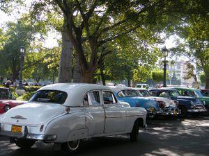 Cuba 007