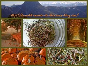 Automne-collage