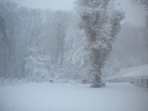 Il-a-neige-a-Ymare--6-.JPG