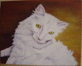 chatte blanche