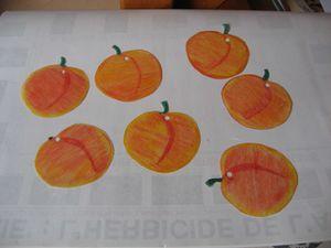 confitures-d-abricot-et-presentation-pour-cadeau-001.jpg