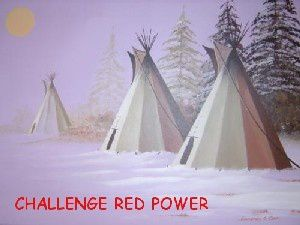 http://img.over-blog.com/300x225/1/93/46/69/images2/challenge-red-power2.jpg