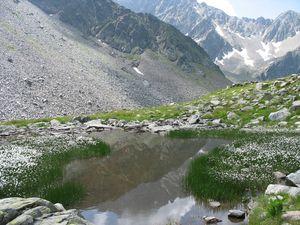 Lac-Blanc---Lac-Noir-2583b.JPG