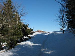 Sous-le-Mont-Trelod 8783b