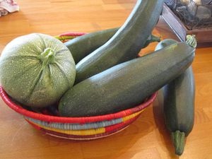 R-courgettes (4)