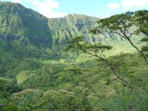 Tahiti-Punaruu-7-9 février 2012- campement vu du plateau