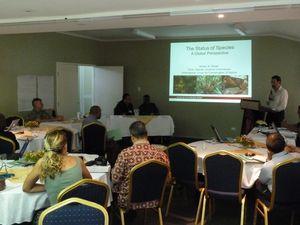 Honiara-Solomons-25 mai 2012- 010