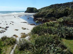 New Zealand-Central South Island-01-10 nov. 2012-Haast-dune