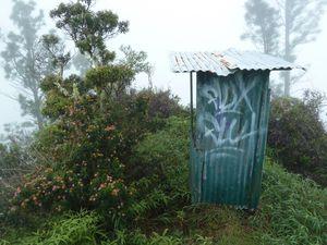 Tahiti Fare Mato 14 février 2013 Lantana & toilettes