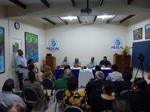 FIJI-Suva-juillet 2013-Mescal