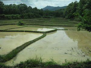 Best-of-Thailand-1 8603