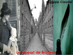 couverture_-le-rapport-de-brodeck-copie-1.jpg