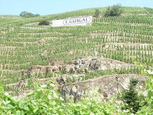 191-Côtes Roties