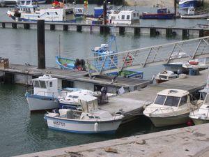 Noirmoutier Mai 2009 040