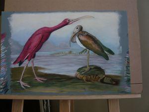 ibis a peu près fini