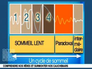 CYCLES-SOMMEIL.jpg