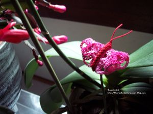 mini-papillon-roserouge-crochet-decoration