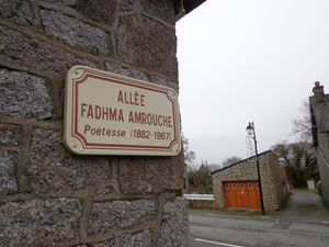 Alle-Fadhma-Ath-Mansour.jpg