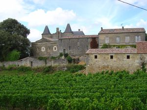 18---Side-view-of-the-Chateau-de-Roques.JPG