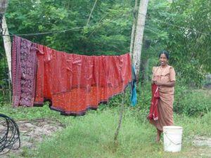 Mararikulam village (2)