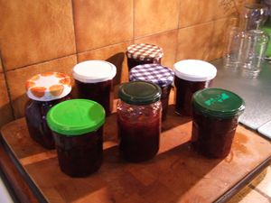 confiture de quetsches (7)