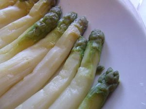 asperges blanches (24)
