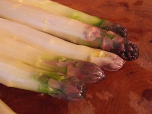 asperges blanches (9)