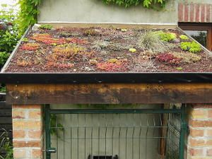 Toit terrasse interdit par plu questions 30 messages for Toit terrasse vegetal