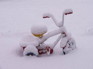 meteo 2010 12 19 tricycle