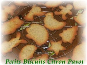 Biscuits citron pavot 2