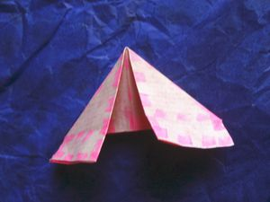 etape-pliage-papier-element-couronne-sapin.JPG