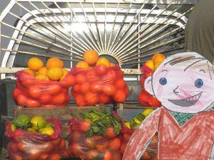 clément-oranges