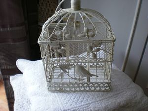cage 1