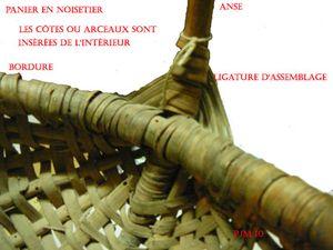 2 noisetier 190