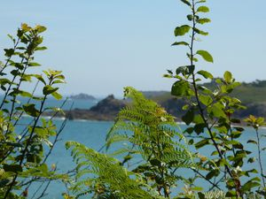 2010-0708-Cancale-037