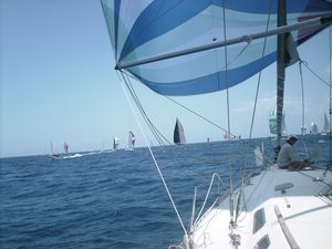 voile5